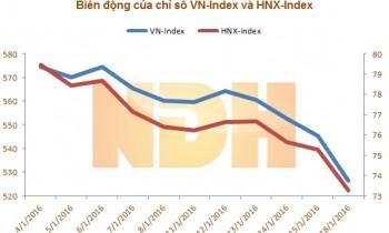 VN-Index start 2016 riskily